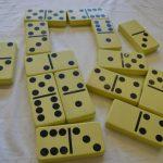 E15230 Reuze Domino