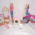 D14465 Speelset Barbie boerderij